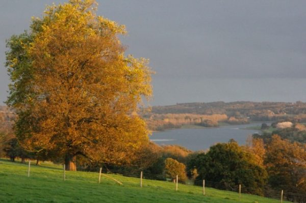 Bewl Water in Autumn
