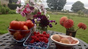 Home-grown produce for guests to enjoy