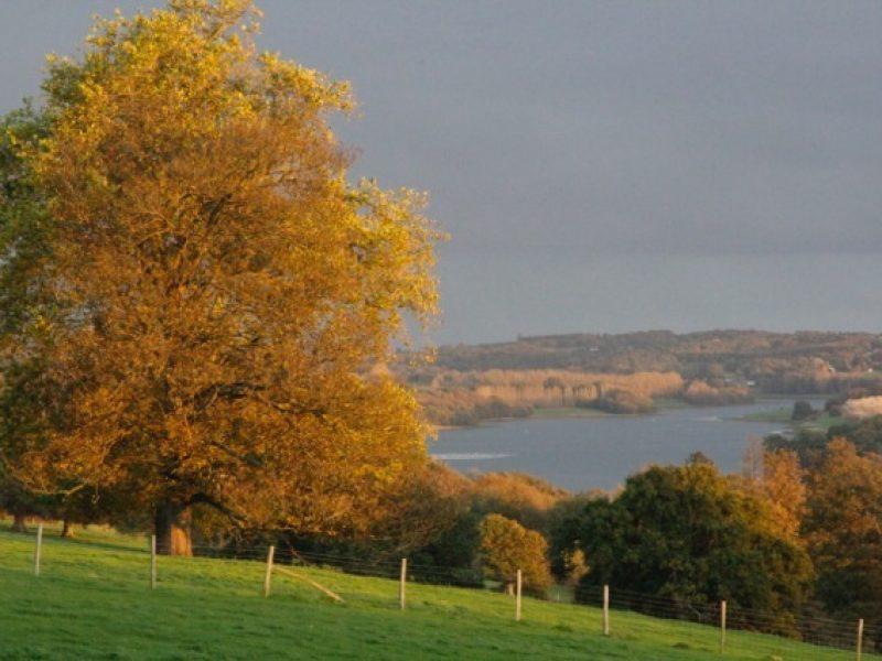Bewl Water in Autumn
